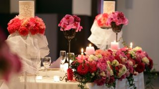 友人の結婚式に着る 20代女性の春夏キレイ色ドレス4選